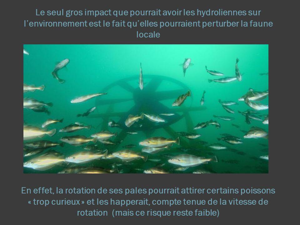 Le seul gros impact que pourrait avoir les hydroliennes sur l'environnement est le fait qu'elles pourraient perturber la faune locale