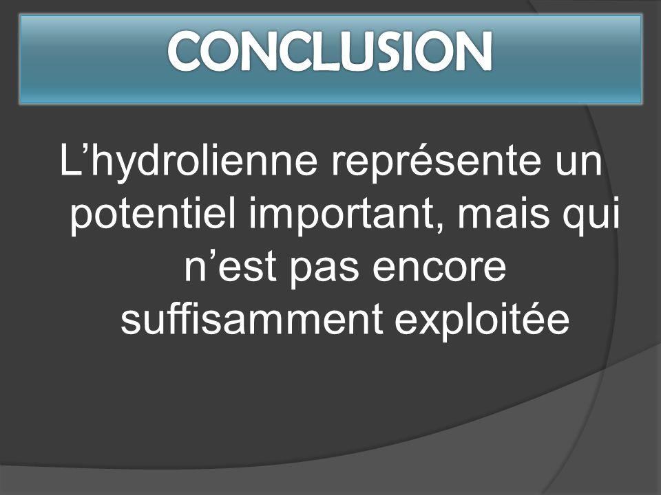 CONCLUSION L'hydrolienne représente un potentiel important, mais qui n'est pas encore suffisamment exploitée.