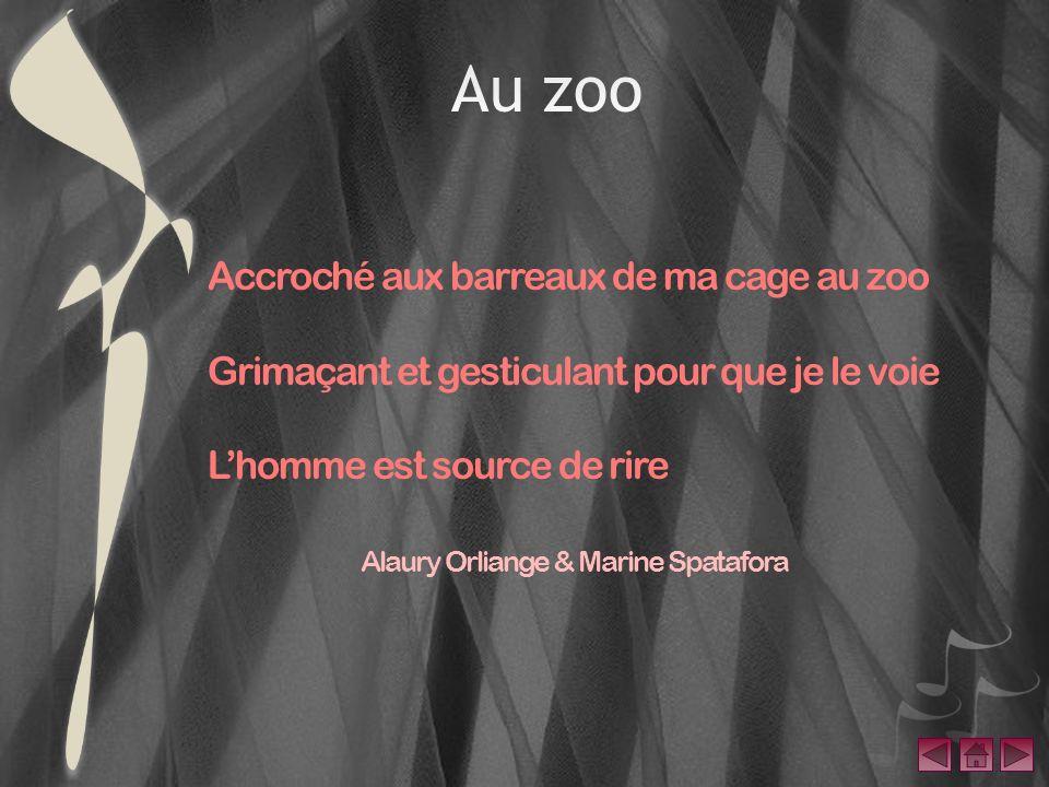 Au zoo Accroché aux barreaux de ma cage au zoo