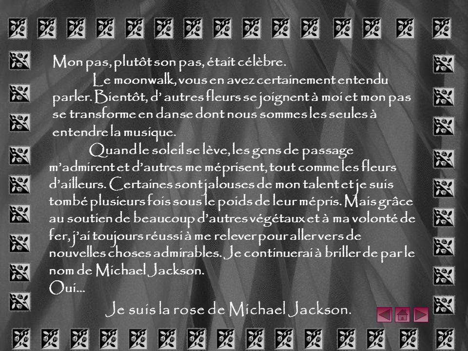 Je suis la rose de Michael Jackson.