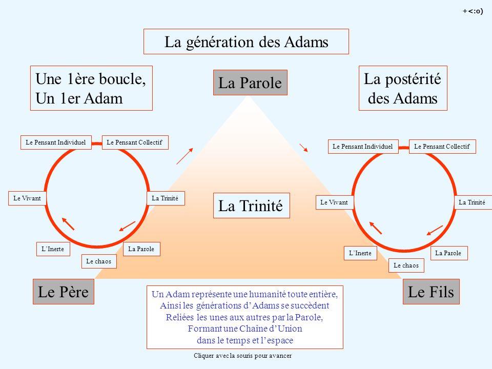 La génération des Adams