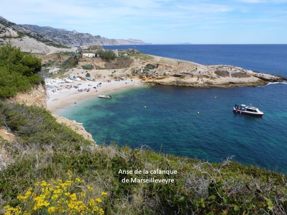 Anse de la calanque de Marseilleveyre