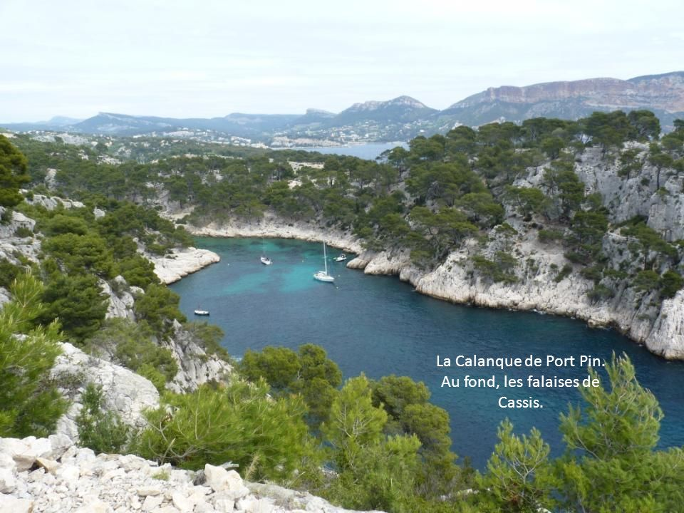 La Calanque de Port Pin. Au fond, les falaises de Cassis.