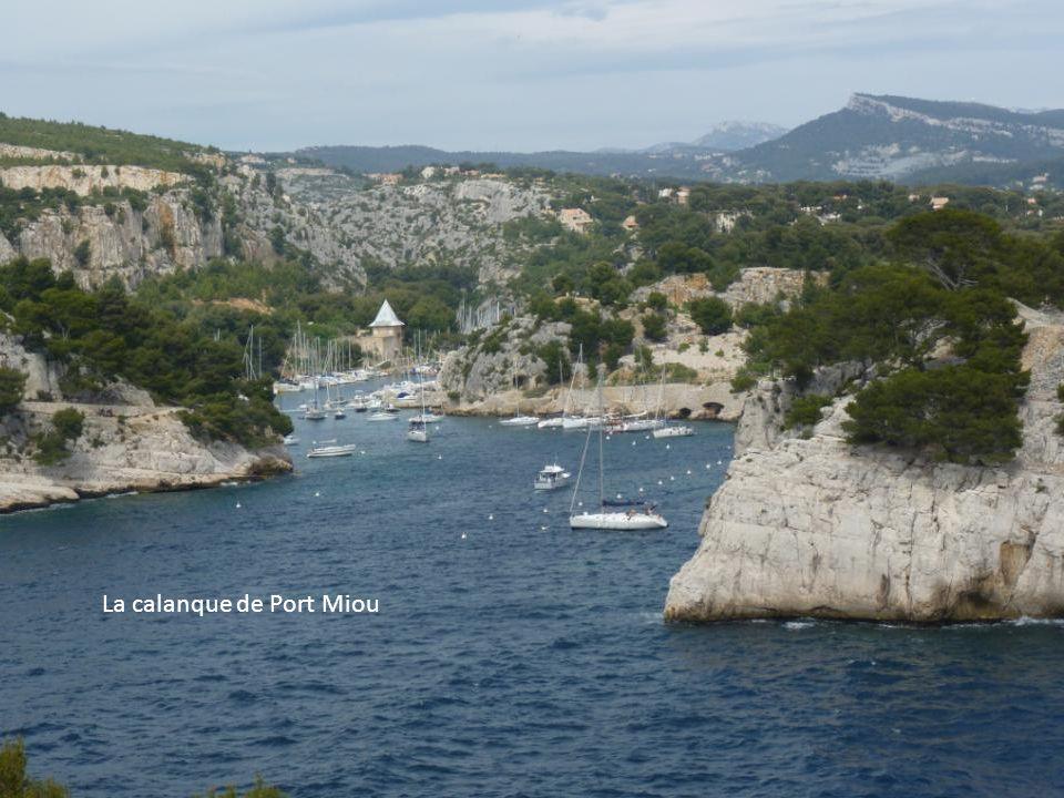 La calanque de Port Miou