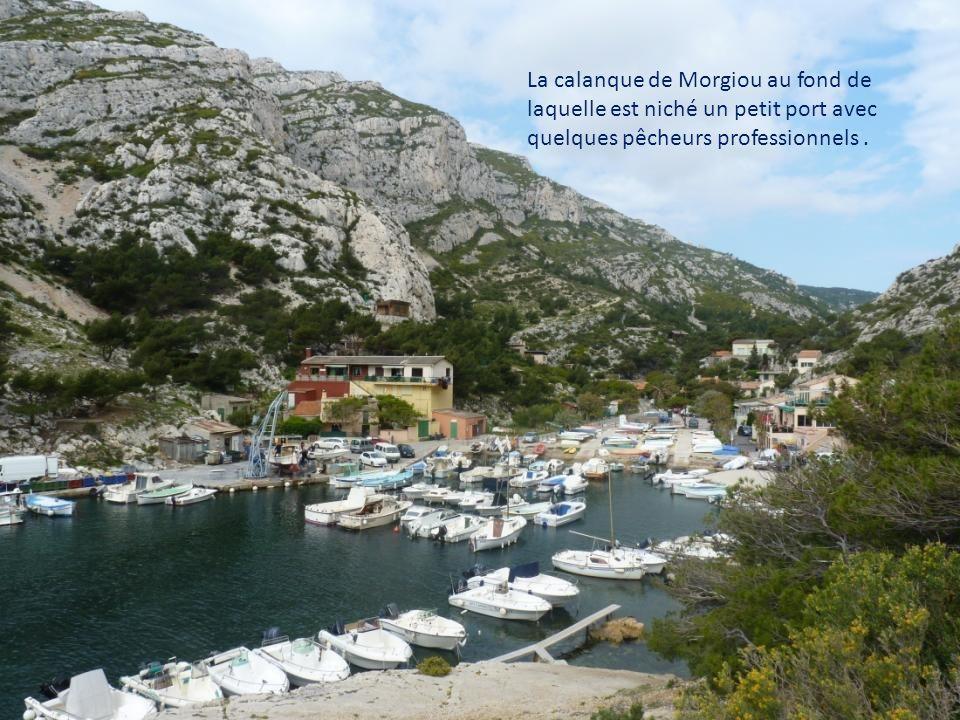 La calanque de Morgiou au fond de laquelle est niché un petit port avec quelques pêcheurs professionnels .
