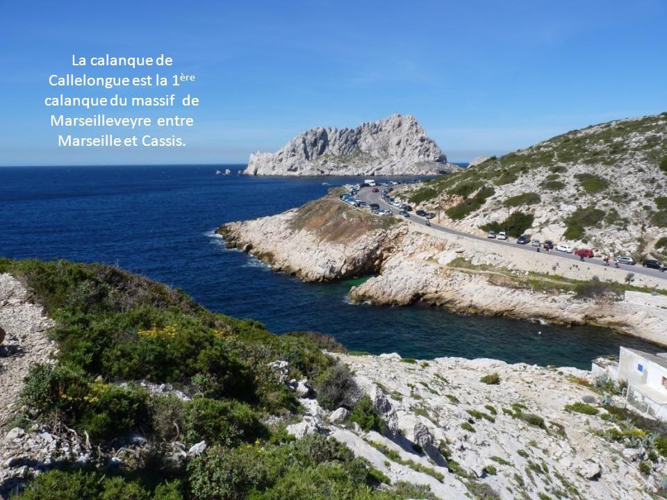 La calanque de Callelongue est la 1ère calanque du massif de Marseilleveyre entre Marseille et Cassis.
