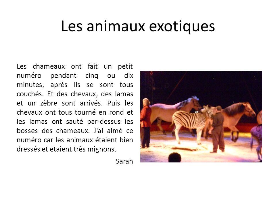 Les animaux exotiques