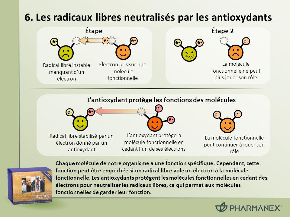 6. Les radicaux libres neutralisés par les antioxydants