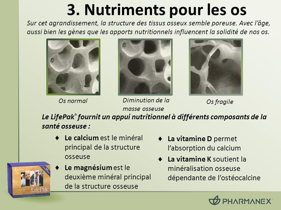3. Nutriments pour les os