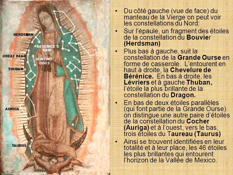 Du côté gauche (vue de face) du manteau de la Vierge on peut voir les constellations du Nord: