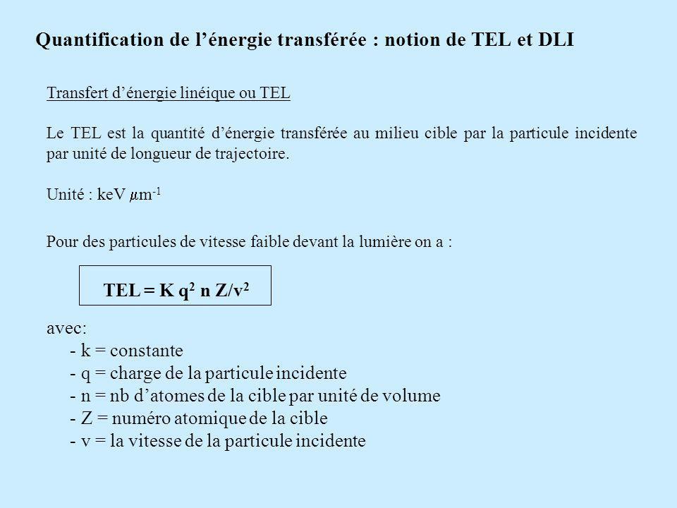 Quantification de l'énergie transférée : notion de TEL et DLI