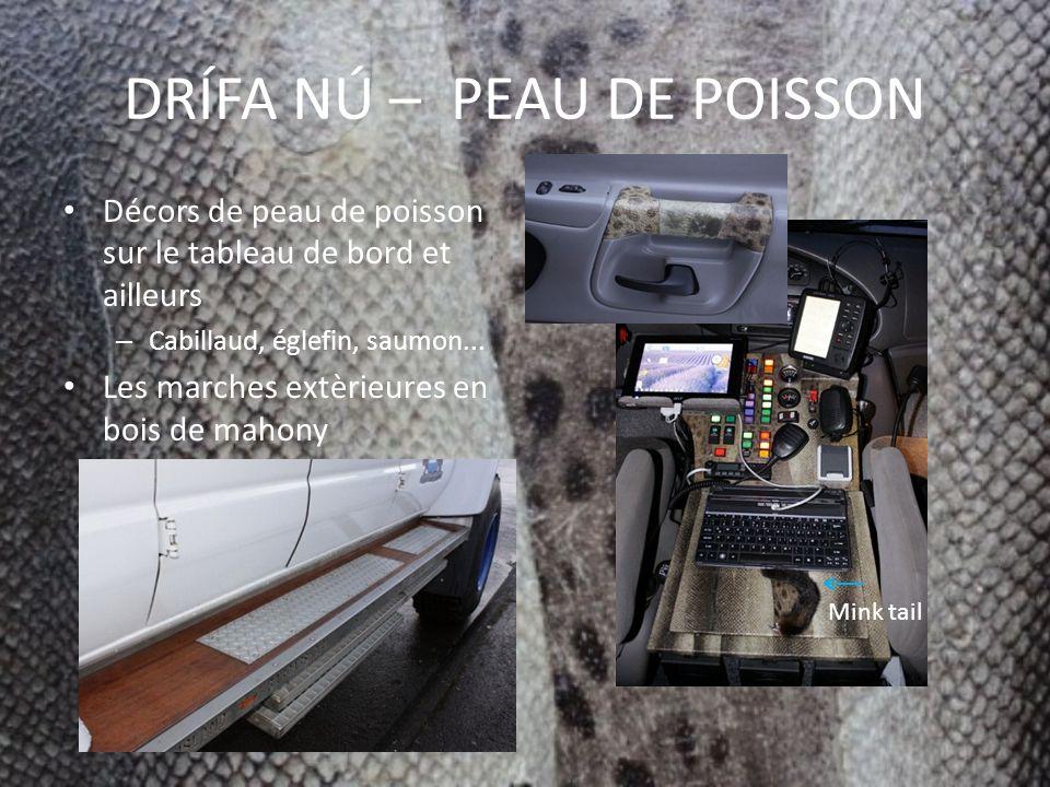 DRÍFA NÚ – PEAU DE POISSON