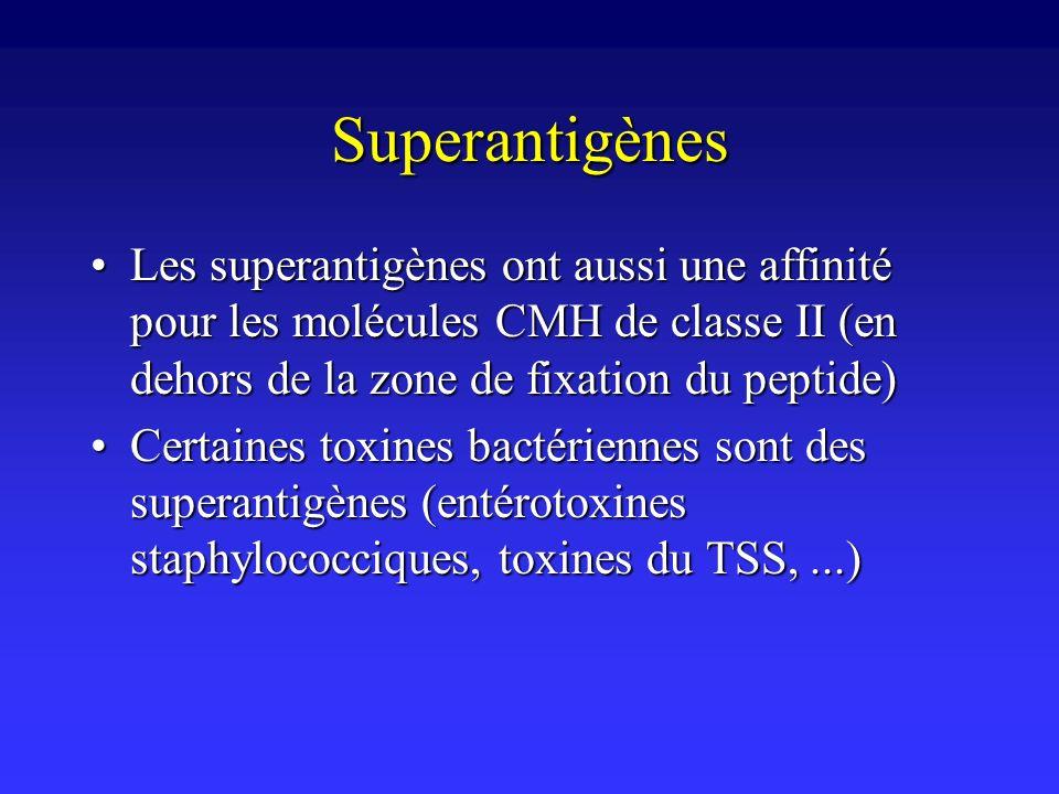 Superantigènes Les superantigènes ont aussi une affinité pour les molécules CMH de classe II (en dehors de la zone de fixation du peptide)