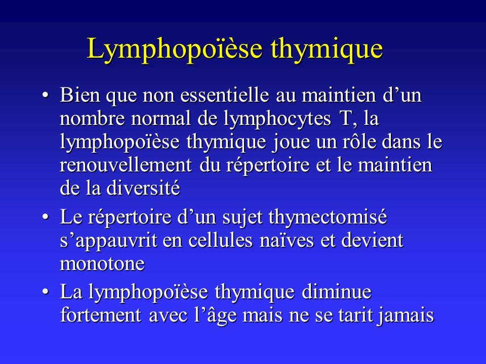 Lymphopoïèse thymique