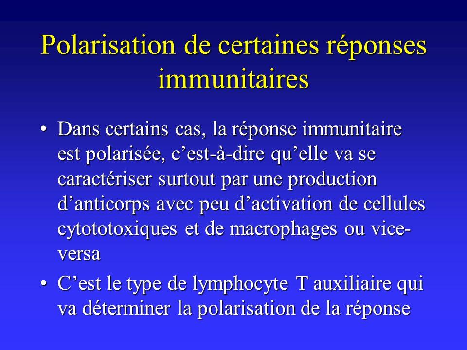 Polarisation de certaines réponses immunitaires
