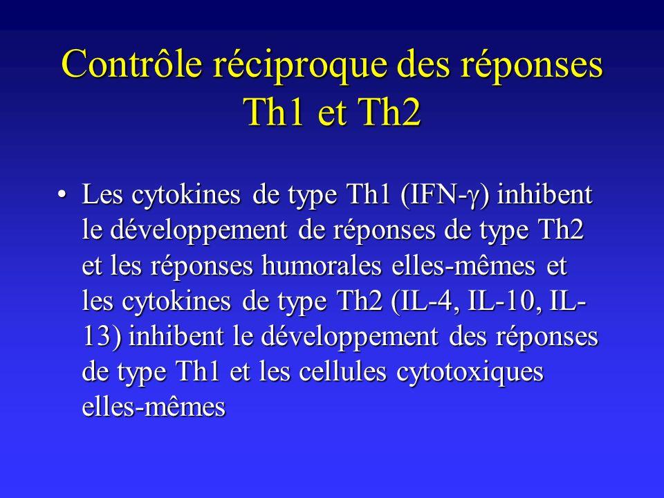 Contrôle réciproque des réponses Th1 et Th2