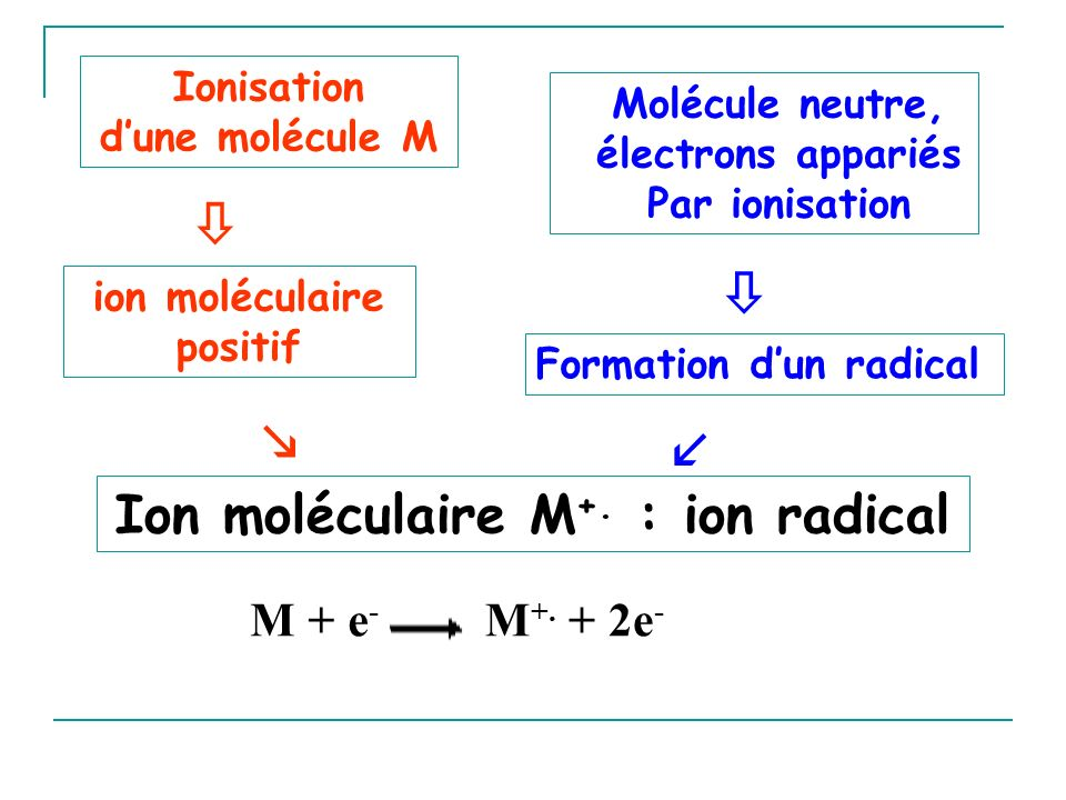 Ion moléculaire M+. : ion radical