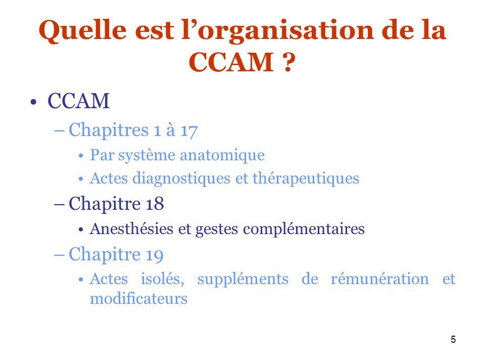 Quelle est l'organisation de la CCAM