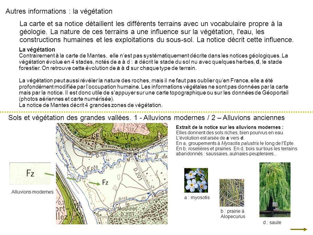 Autres informations : la végétation