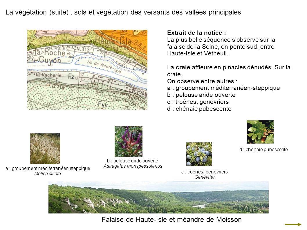 Falaise de Haute-Isle et méandre de Moisson