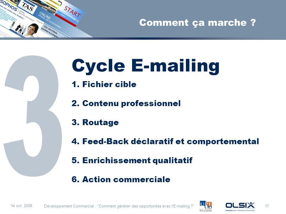 Cycle E-mailing sss 3 Comment ça marche Fichier cible