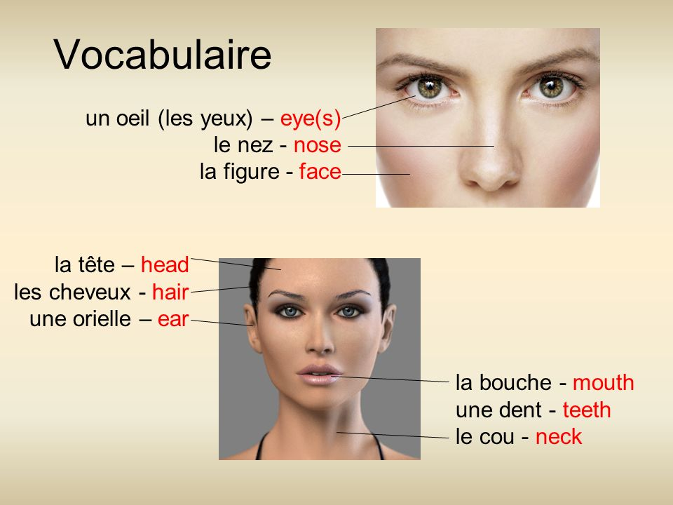 Vocabulaire un oeil (les yeux) – eye(s) le nez - nose la figure - face