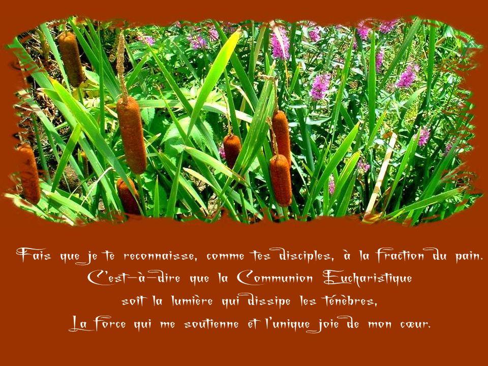 C'est-à-dire que la Communion Eucharistique