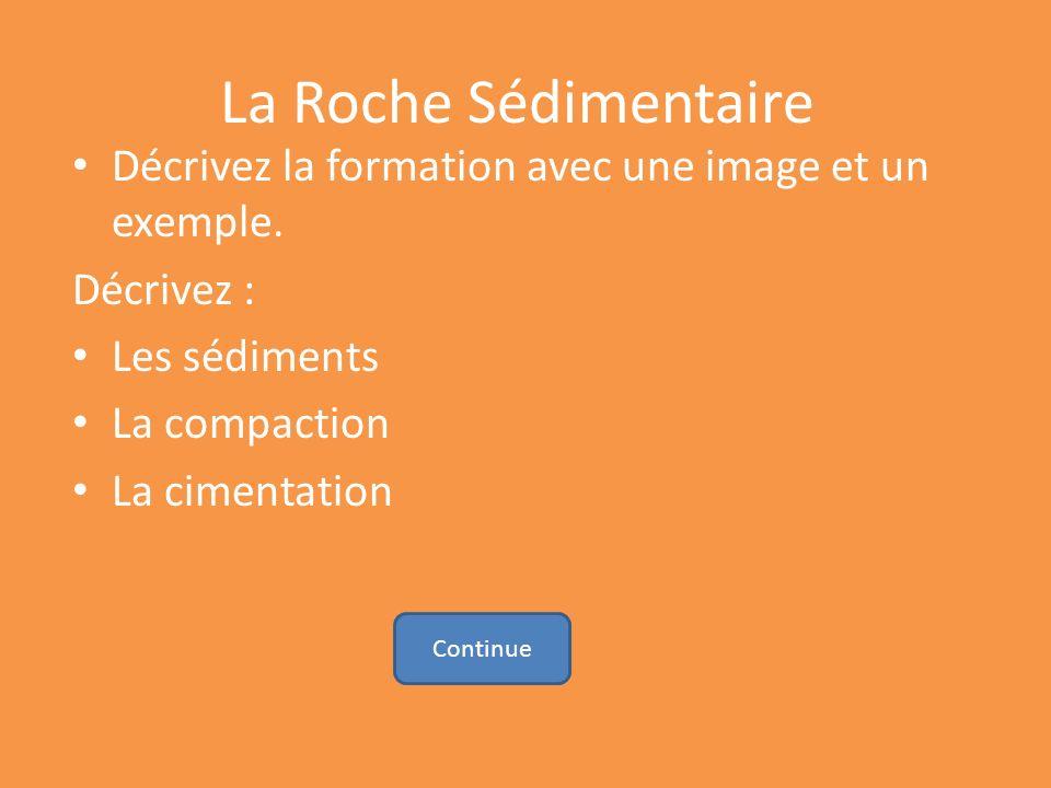 La Roche Sédimentaire Décrivez la formation avec une image et un exemple. Décrivez : Les sédiments.