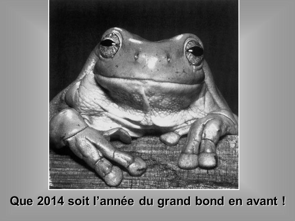 Que 2014 soit l'année du grand bond en avant !