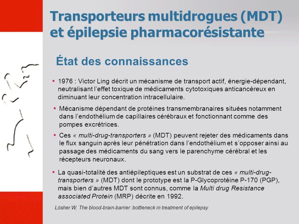 Transporteurs multidrogues (MDT) et épilepsie pharmacorésistante