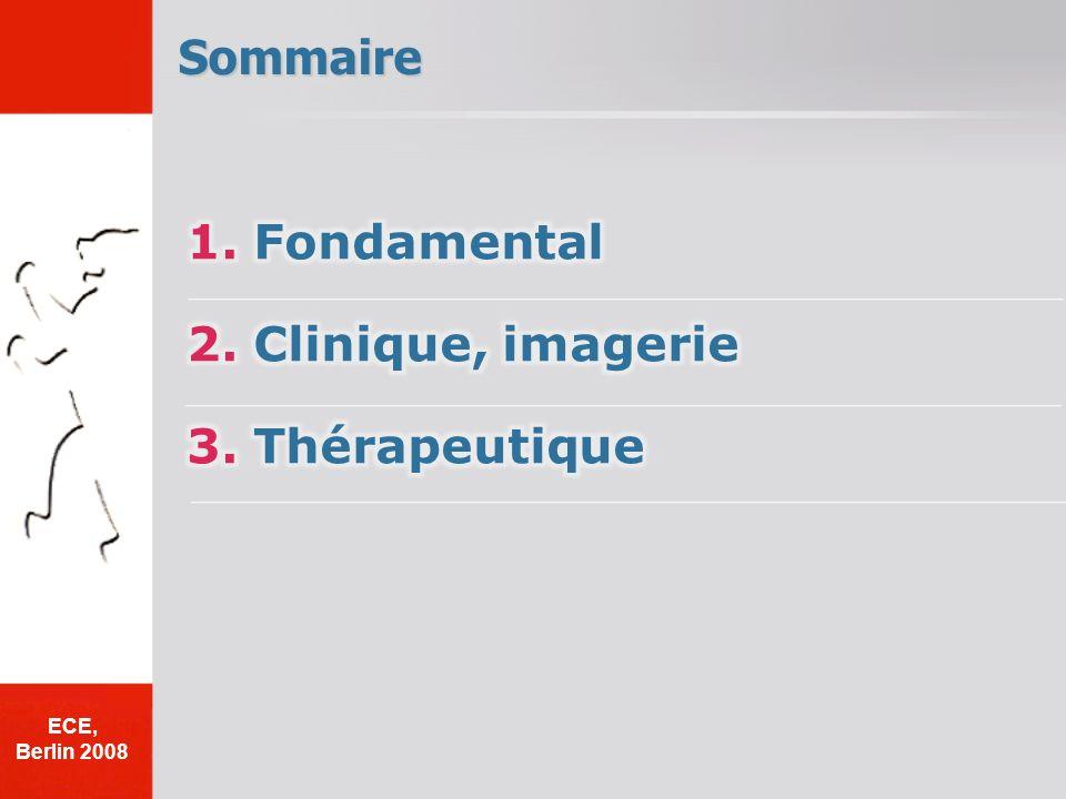 Sommaire 1. Fondamental 2. Clinique, imagerie 3. Thérapeutique ECE,