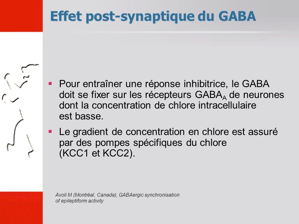 Effet post-synaptique du GABA