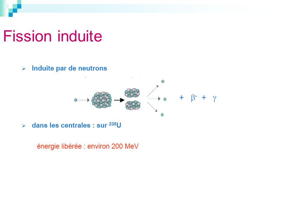 Fission induite