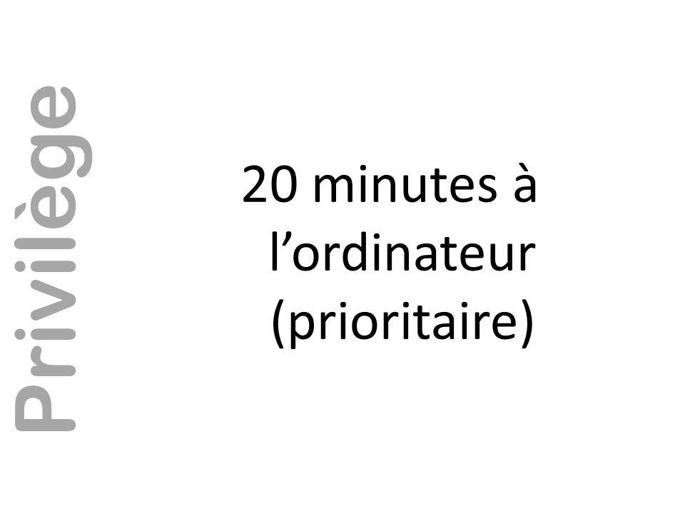 20 minutes à l'ordinateur (prioritaire)