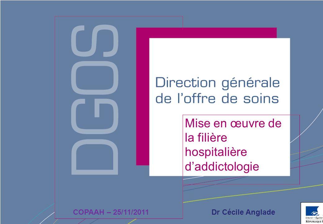 Mise en œuvre de la filière hospitalière d'addictologie