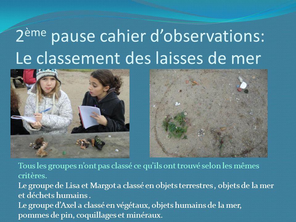 2ème pause cahier d'observations: Le classement des laisses de mer