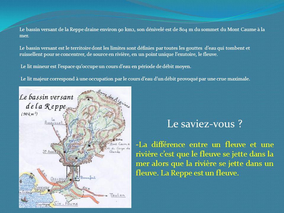 Le bassin versant de la Reppe draine environ 90 km2, son dénivelé est de 804 m du sommet du Mont Caume à la