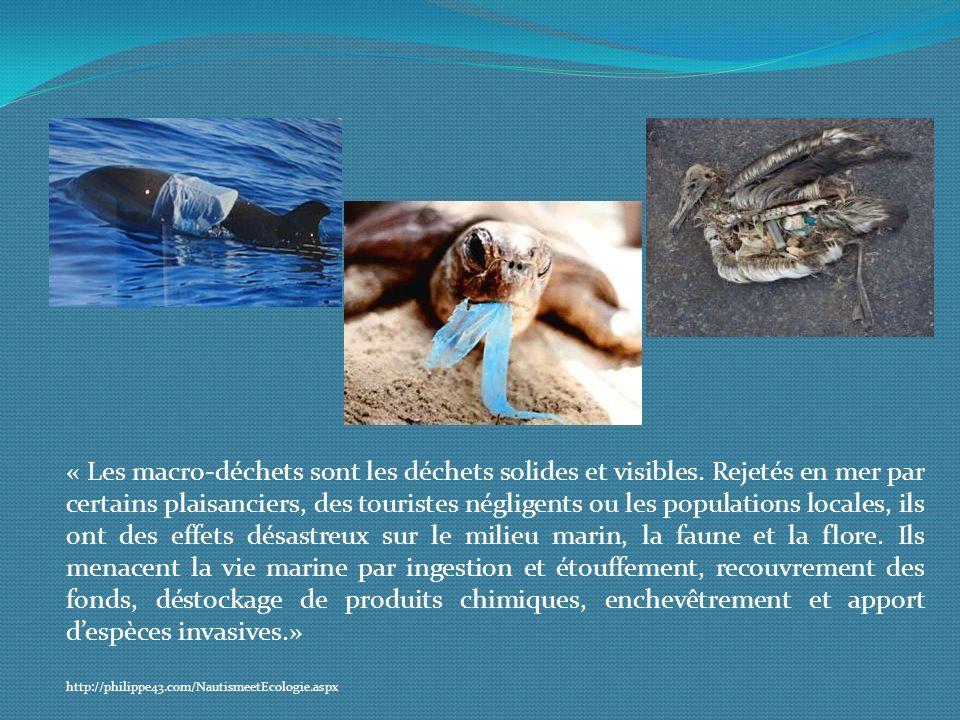 « Les macro-déchets sont les déchets solides et visibles
