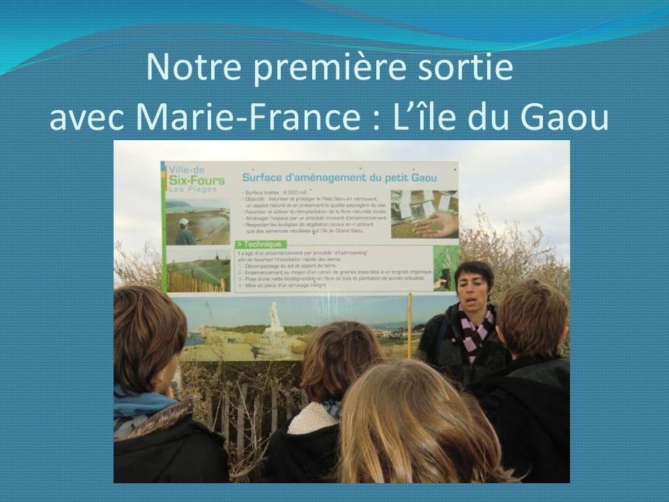 Notre première sortie avec Marie-France : L'île du Gaou