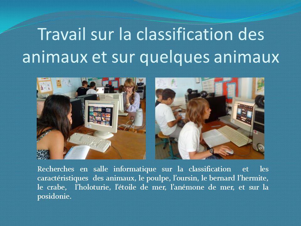 Travail sur la classification des animaux et sur quelques animaux