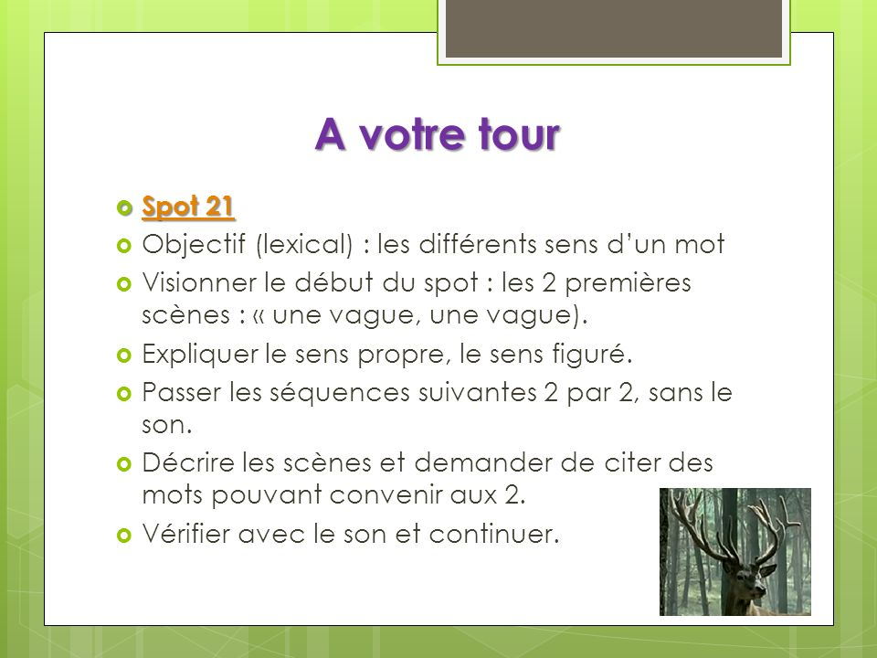 A votre tour Spot 21 Objectif (lexical) : les différents sens d'un mot