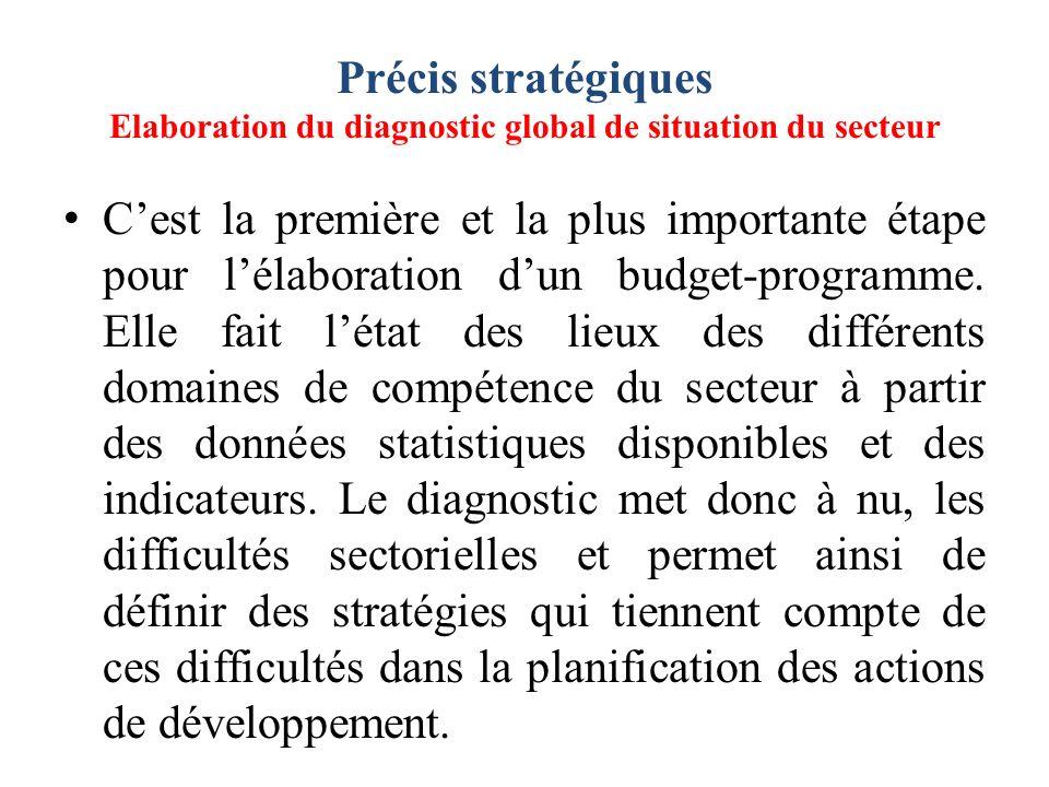 Précis stratégiques Elaboration du diagnostic global de situation du secteur
