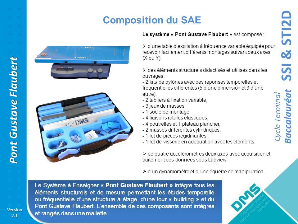 Composition du SAE Le système « Pont Gustave Flaubert » est composé :