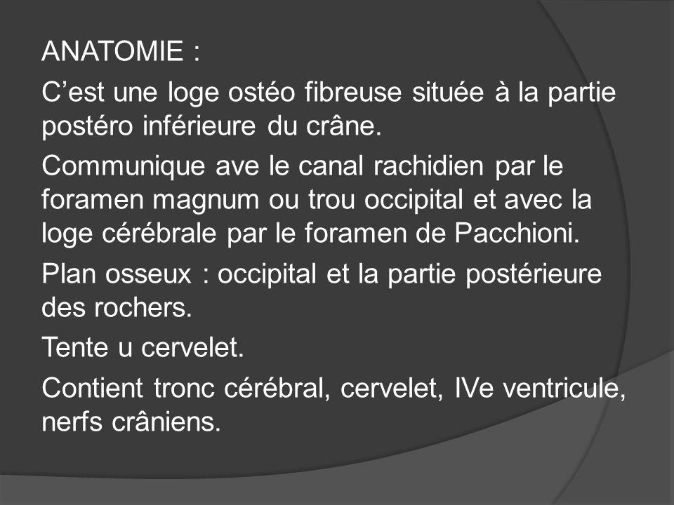 ANATOMIE : C'est une loge ostéo fibreuse située à la partie postéro inférieure du crâne.