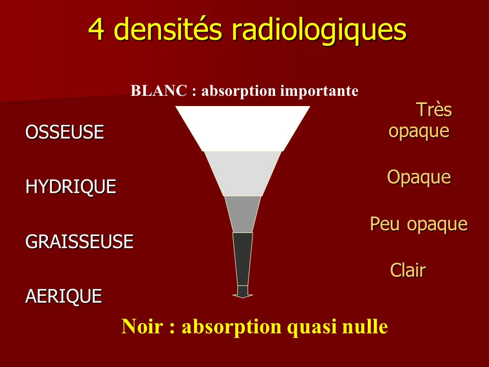 4 densités radiologiques