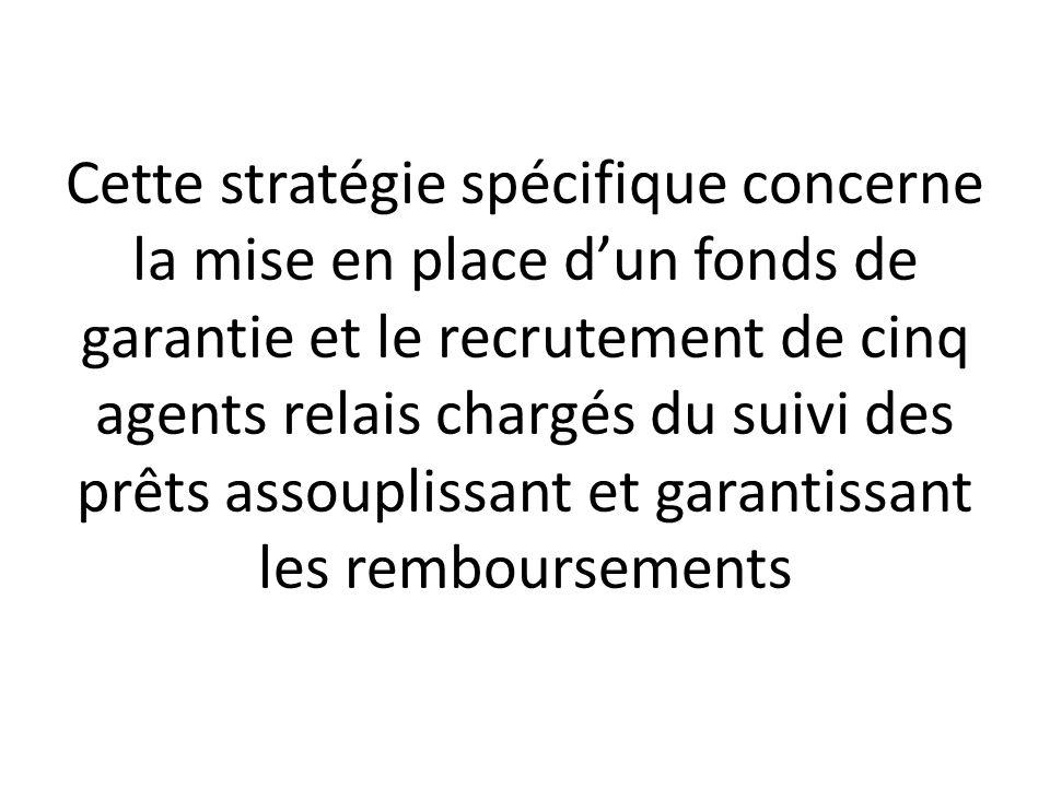 Cette stratégie spécifique concerne la mise en place d'un fonds de garantie et le recrutement de cinq agents relais chargés du suivi des prêts assouplissant et garantissant les remboursements