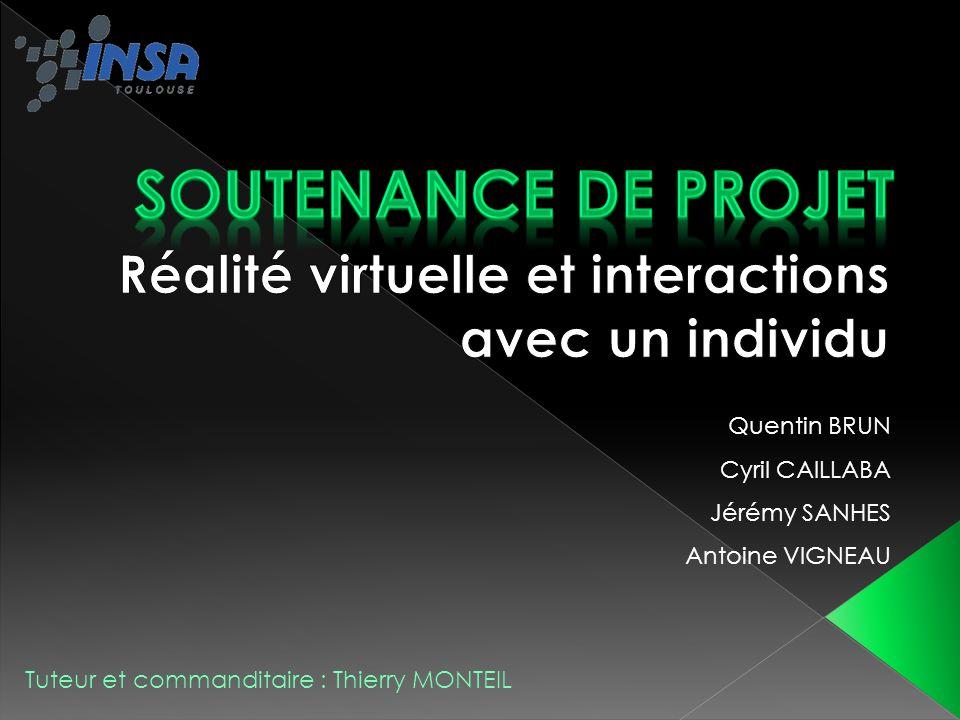 Réalité virtuelle et interactions avec un individu