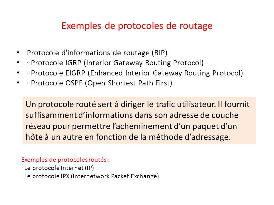 Exemples de protocoles de routage