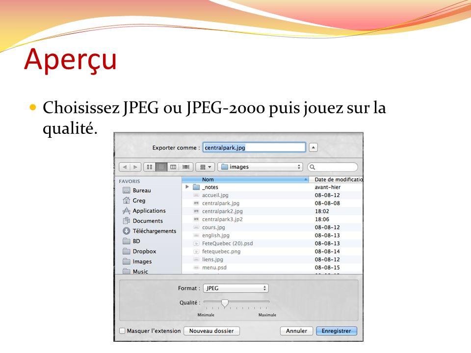 Aperçu Choisissez JPEG ou JPEG-2000 puis jouez sur la qualité.