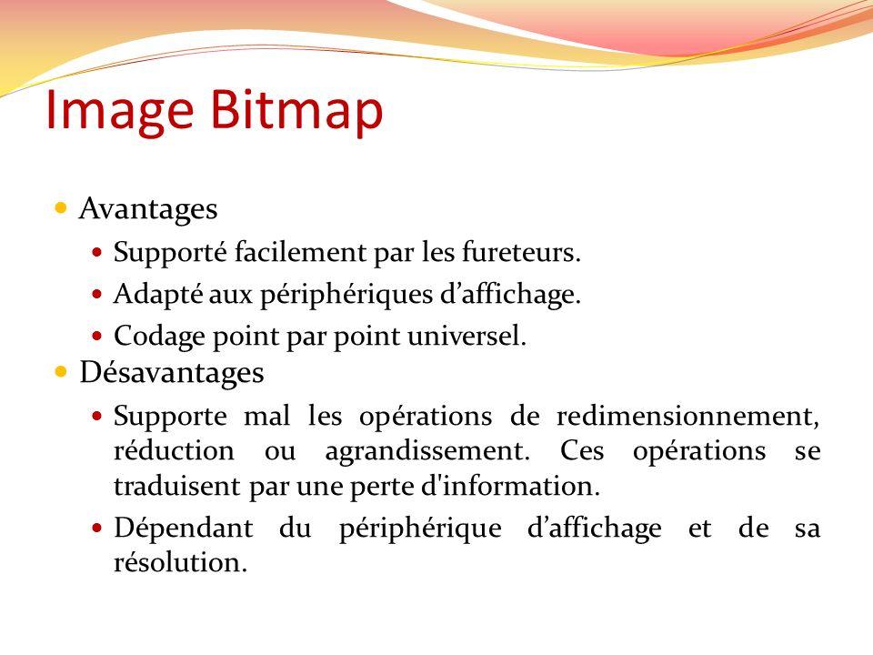 Image Bitmap Avantages Désavantages